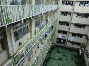 震災の年の四月。1400人の双葉町民の避難所となった旧騎西高校